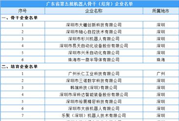 广东省第五批机器人骨干(培育)企业名单:21家企业入选(附名单)