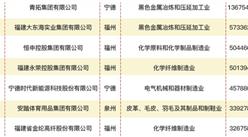 2020福建省民营企业制造业50强排行榜
