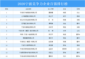 2020年宁波市竞争力企业百强排行榜