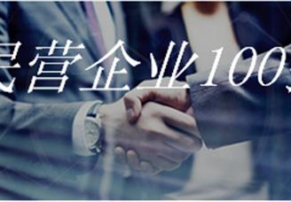 2020武汉民营企业100强排行榜