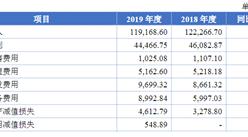 杭州立昂微电子首次发布在上交所上市  上市主要存在风险分析(图)