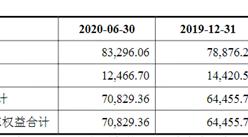 华文食品首次发布在创业板上市  上市主要存在风险分析(图)
