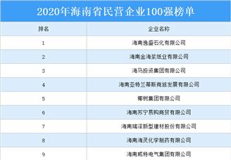 2020年海南省民营企业100强排行榜