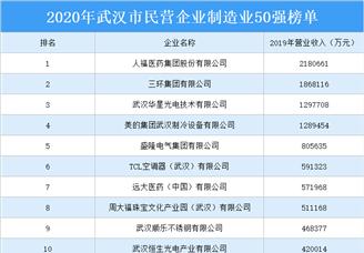 2020年武汉民营企业制造业50强排行榜