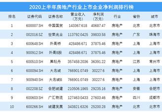 2020上半年房地产行业上市企业净利润排行榜 TOP100