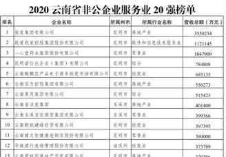 2020云南非公企业服务业20强排行榜