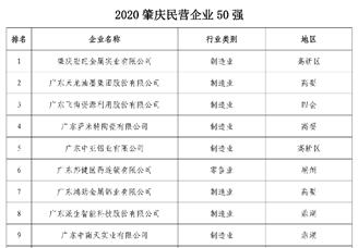 2020肇庆民营企业50强排行榜