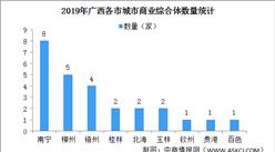 2020年广西各市城市商业综合体运行情况分析:南宁总量占广西的三成(图)