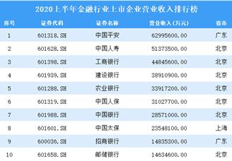2020上半年金融行业上市企业营业收入排行榜TOP100