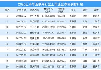 2020上半年互联网行业上市企业净利润排行榜