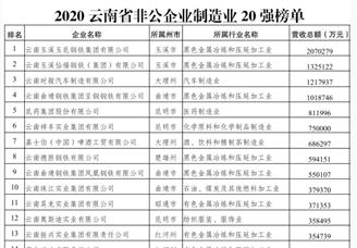 2020年云南非公企业制造业20强排行榜