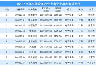 2020上半年电器设备行业上市企业净利润排行榜