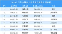 2020上半年安徽省上市企业100强排行榜