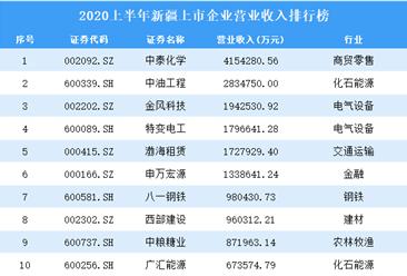 2020上半年新疆上市企业营业收入排行榜