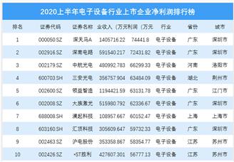 2020上半年电子设备行业上市企业净利润排行榜 TOP100(附榜单)