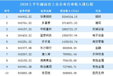2020上半年湖南省上市企业营业收入排行榜