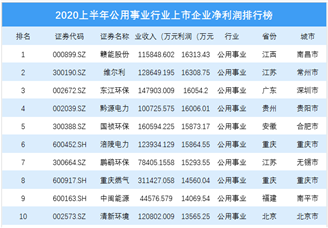 2020上半年公用事业行业上市企业净利润排行榜 TOP100(附榜单)