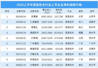 2020上半年信息技术行业上市企业净利润排行榜 TOP100