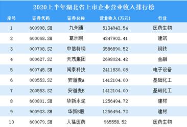 2020上半年湖北省上市企业营业收入排行榜