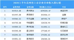 2020上半年贵州省上市企业30强排行榜