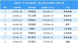 2020上半年河南省上市企业50强排行榜