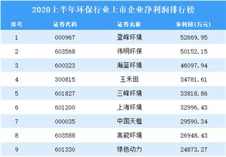 2020上半年环保行业上市企业净利润排行榜