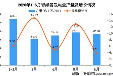 2020年1-6月青海省发电量产量为389.70万吨 同比增长7.98%