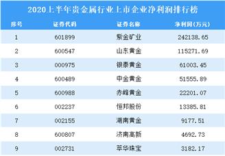 2020上半年贵金属行业上市企业净利润排行榜