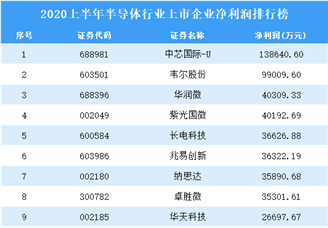 2020上半年半导体行业上市企业净利润30强排行榜