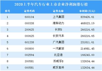 2020上半年汽车行业上市企业净利润排行榜TOP100
