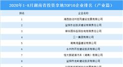 产业地产投资情报:2020年1-8月湖南省投资拿地前十企业排行榜(产业篇)