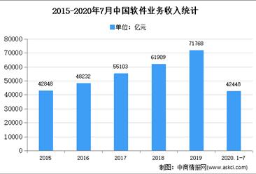 2020年中国软件 技术实现 效劳外包环境现状及发展趋势预测归纳