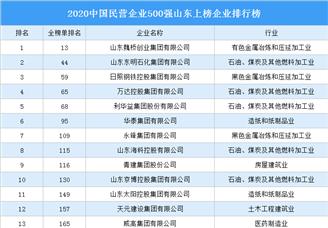 2020中国民营企业500强山东上榜企业排行榜