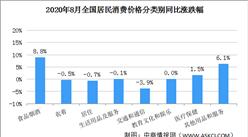 2020年8月居民消费价格CPI同比上涨2.4% 猪肉价格上涨52.6%(附图表)