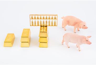 """""""非洲猪瘟""""对中国生猪产业影响分析:下半年猪肉价格大幅上涨可能性不大"""