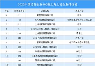 2020中国民营企业500强上海上榜企业排行榜(附榜单)