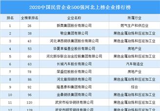 2020中国民营企业500强河北上榜企业排行榜(附榜单)