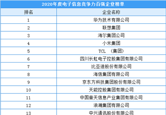 2020年度电子信息竞争力百强企业排行榜