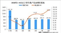 2020年8月辽宁省生铁产量数据统计分析