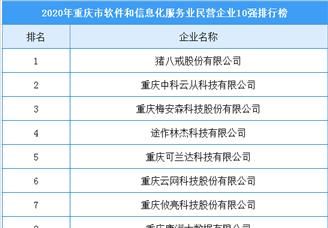 2020年重庆市软件和信息化服务业民营企业10强排行榜