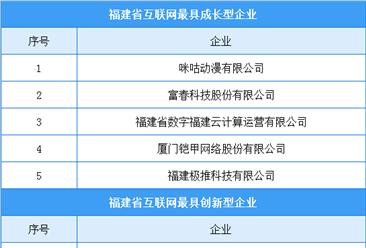 2020年福建省互联网最具成长型/创新型企业名单出炉(附榜单)