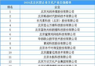 2020年北京市民营企业文化产业百强排行榜