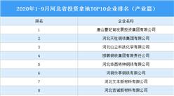 产业地产投资情报:2020年1-9月河北投资拿地TOP10企业排名(产业篇)