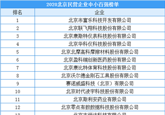 2020年北京市民营企业中小百强排行榜