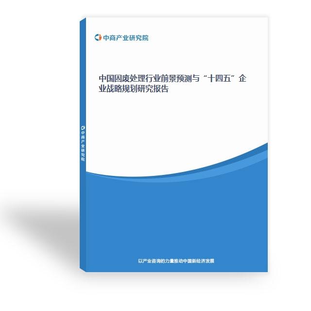 """中國固廢處理行業前景預測與""""十四五""""企業戰略規劃研究報告"""