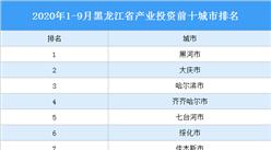 2020年1-9月黑龙江省产业投资前十城市排名(产业篇)