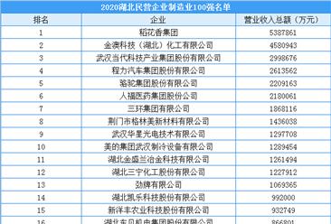 2020年湖北省民营企业制造业100强排行榜