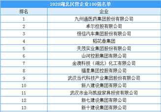2020年湖北省民营企业100强排行榜
