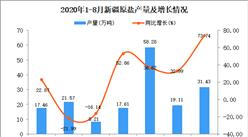 2020年8月新疆原盐产量数据统计分析