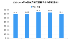 2020年中国蛋鸡市场现状及发展趋势预测分析